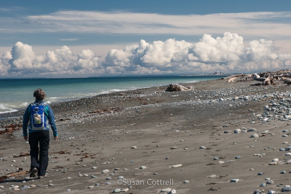 Hiking out Dungeness Spit with blue sky and a stunning cloud show