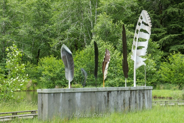 I loved these feathers on the Art Trail at Willapa National Wildlife Refuge
