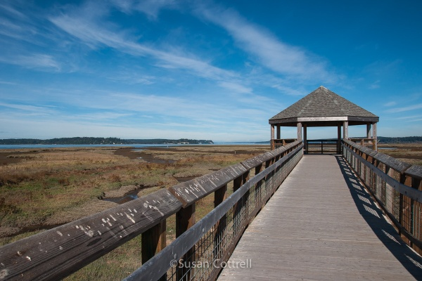 Boardwalk at Nisqually National Wildlife Refuge