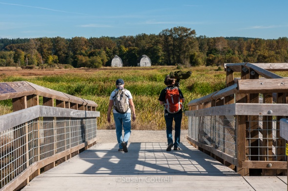 Birders at Nisqually National Wildlife Refuge
