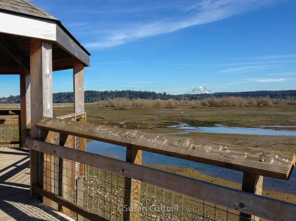 Nisqually National Wildlife Refuge